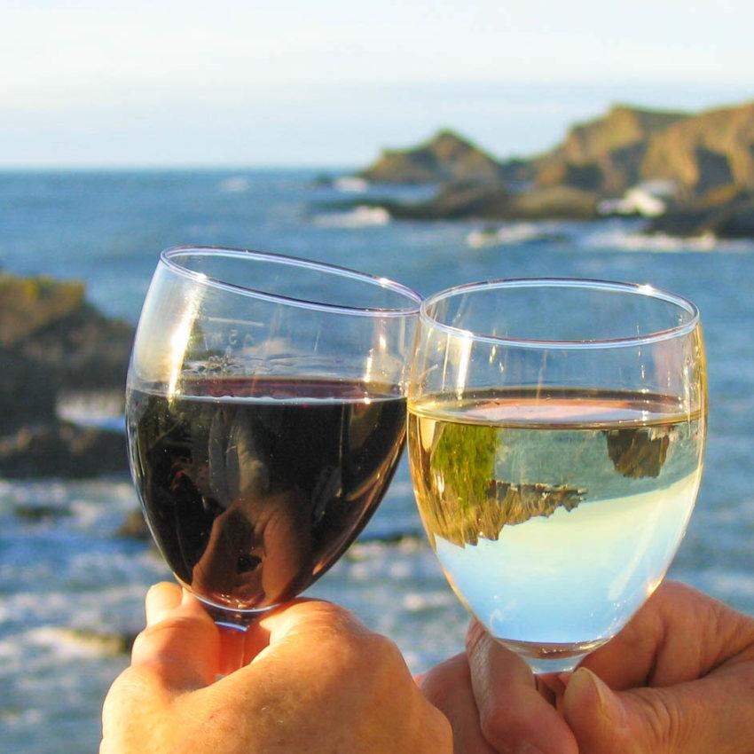 Vinařské plavby a gurmánství